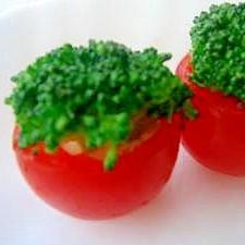 お弁当に♪トマトプランター