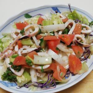 いかとタップリ野菜のまろやか香ばしいごまサラダ