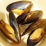 ムール貝のニンニク酒蒸し