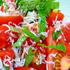 トマトと大葉としらすのサラダ