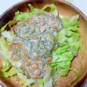 めかぶ納豆サラダ++