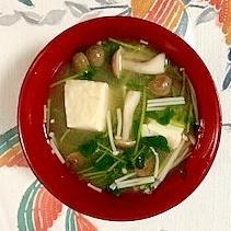 豆苗、木綿豆腐、ブナシメジ、えのきのお味噌汁