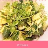 胡瓜とパクチーのゆず胡椒甘酢サラダ