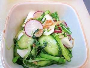朝の100レシピ 88)エビ入り 水菜と蕪の新漬け