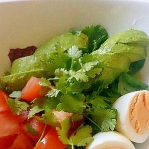 アボカド、トマト、卵のコリアンダーサラダ