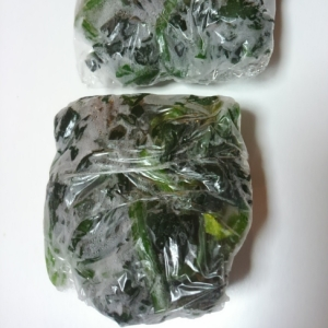 いつでも手軽に♪ 葉野菜の冷凍保存法