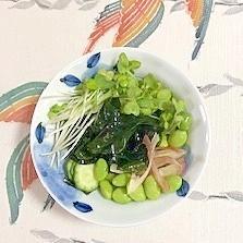 胡瓜、茗荷、貝割れ、ワカメ、枝豆の和え物