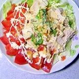 レンジで蒸し鶏サラダ~フレッシュバジルのソースかけ