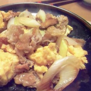 豚肉とネギの炒め物