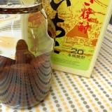 びわ種☆焼酎