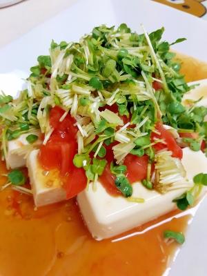 簡単ヘルシー!トマトと貝割れのゴマ風味豆腐サラダ♪