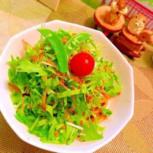 彩り野菜とがごめ昆布のサラダうどん