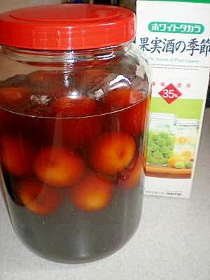 フルーティ♪完熟南高梅で作る!とろける黒糖梅酒
