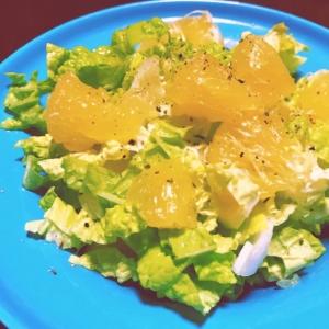 美生柑の白菜サラダ