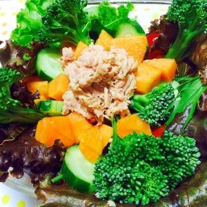柿とツナと野菜サラダ