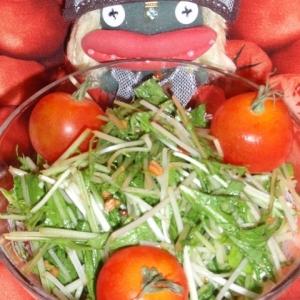 香ばしい!水菜の松の実サラダ