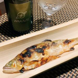 日本酒すすむ、鮎の茗荷葱味噌焼き