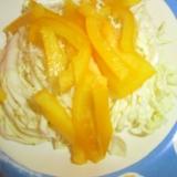 キャベツと黄ピーマンのサラダ