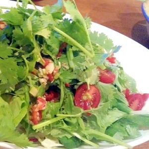 【簡単!】ヘルシー!アジアン風パクチーサラダ