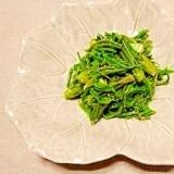 山菜・コシアブラ☆ナムル