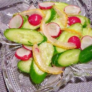 柚子風味☆きゅうりとラデッシュの塩麹漬け
