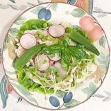 サラダチキンに、オクラ、ラディッシュ、枝豆