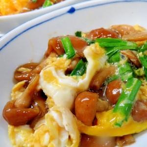 煮付けナメコの卵とじ・丼&お惣菜