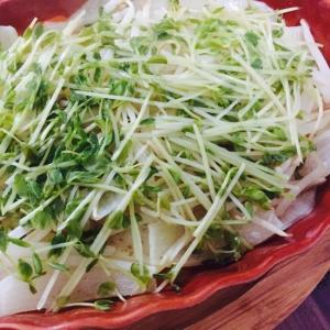 無水調理で美味しい!野菜たっぷり温野菜