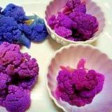 紫カリフラワー☆茹で方比較