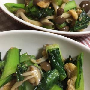 麺つゆで簡単!小松菜の炒め物