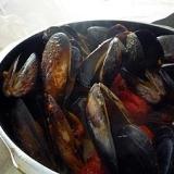 おうちバル☆ムール貝のトマト煮込み