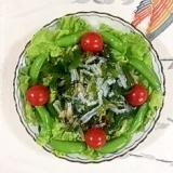 スナップえんどう、海藻サラダを入れて、サラダ