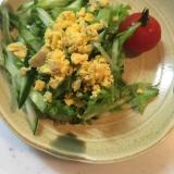 マルチリーフレタス&メスクラングリーンズの生野菜