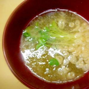 ☆即席味噌汁(とろろ昆布・天かす・カイワレ)