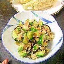 野菜不足に!簡単きゅうりとナスのサラダ