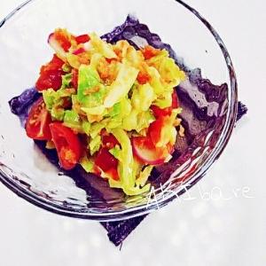 キャベツとトマトとすりおろし人参の春の副菜