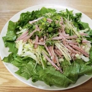 かいわれピリ辛♪グリーンサラダ