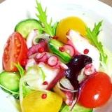 タコのマリネの彩りサラダ