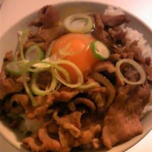 卵がけのおいしい豚丼