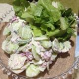 メキシカン♩きゅうりと赤玉ねぎのサラダ