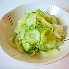 白菜ときゅうりの簡単に漬物(全工程写真あり)