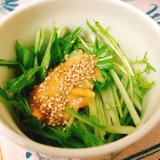 簡単!シンプルな水菜の和風サラダ