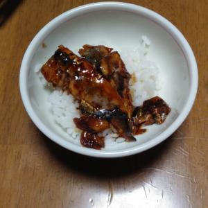 魚の焼肉のタレ丼