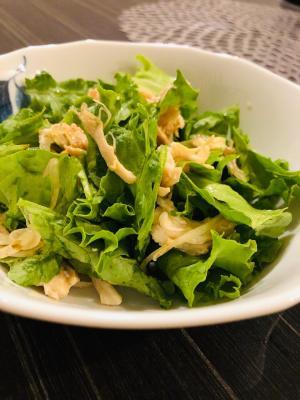 ささみとグリーンリーフの焼き肉のタレ サラダ