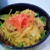 吉野家風 豚丼&牛丼☆