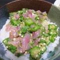 生姜とごま風味がベストマッチ『鯵ぶっかけ丼』