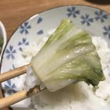 大量に旬の白菜を使用、消費できる!白菜の漬物!