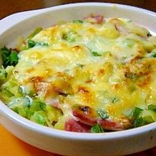 キャベツチーズ焼きグラタン