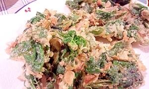 珍しい山菜☆こしあぶらの天ぷら♪