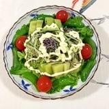 リーフレタス 、スナップえんどう、キウイのサラダ